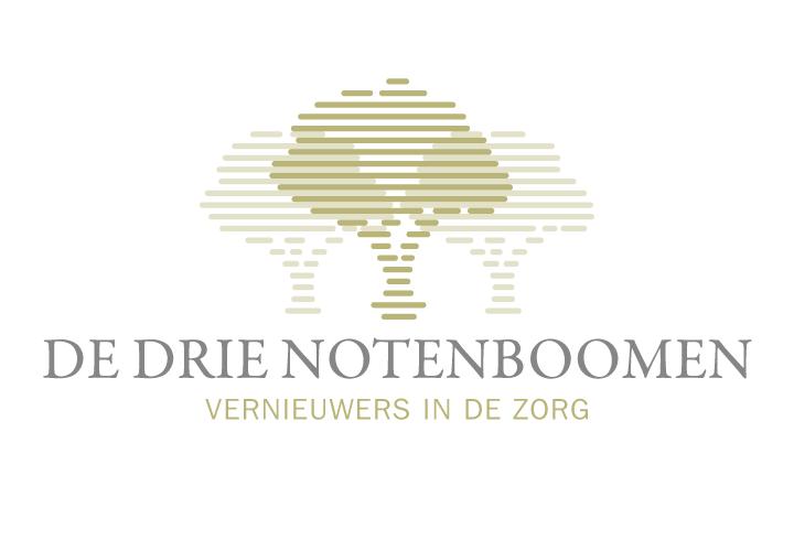 ddn_logo1